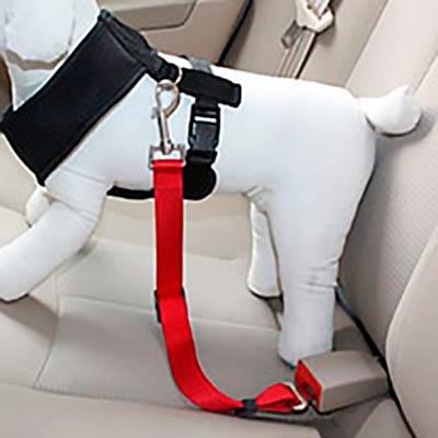 автомобильная шлея для собак