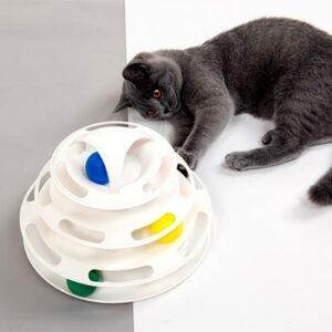 трек для кошек