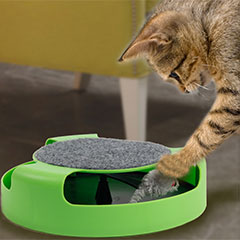 мышка для кошки