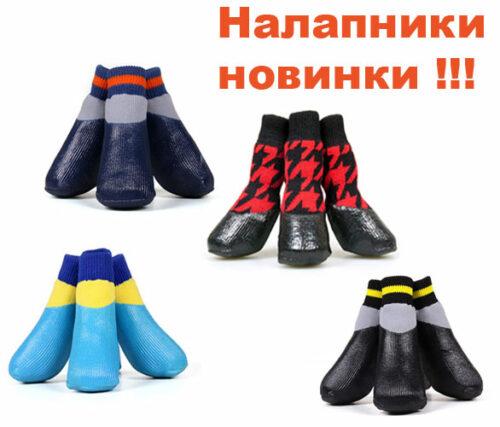 обувь собак