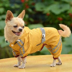 комбинезон для собак