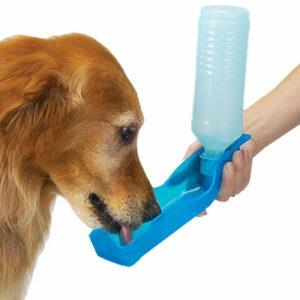 портативная поилка собак