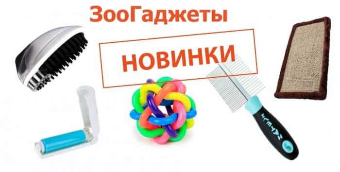 zoonews-700