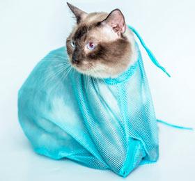 сетка для груминга кошек
