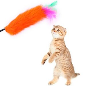 игрушка для кошек перышко