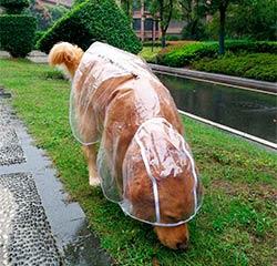 дождевик плащ для собак
