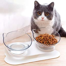 двойная миска для кошек
