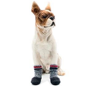 тёплые носки собак