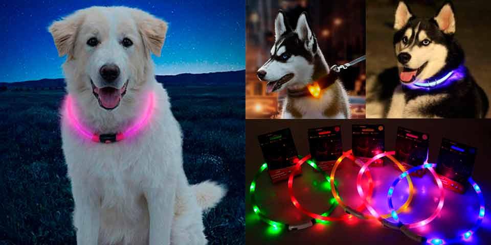 led амуниция для собак